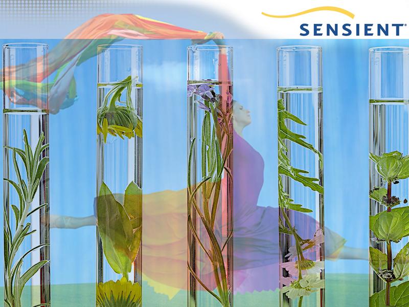 alt basliklar-sensient-sublime