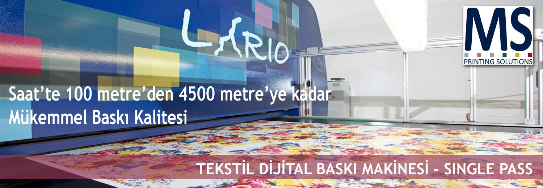 03.MS-Lario